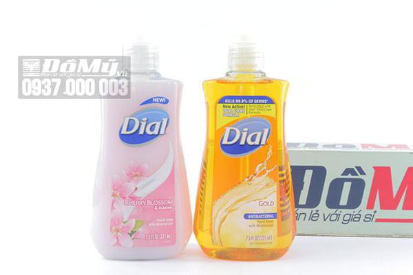 Nước rửa tay diệt khuẩn, dưỡng ẩm da tay Dial 221ml của Mỹ
