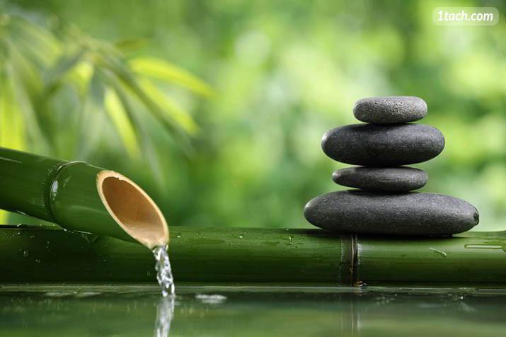 Tác hại của Stress gây ra và cách khắc phục tình trạng stress