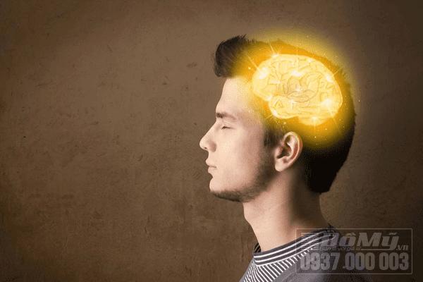 Ginkgo biloba là gì mà lại tốt cho trí não?