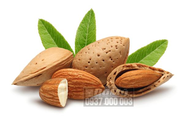 Tổng hợp những loại thực phẩm bổ sung vitamin E cho cơ thể